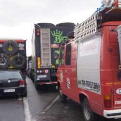 Artgerecht hinter den Rallye-Trucks