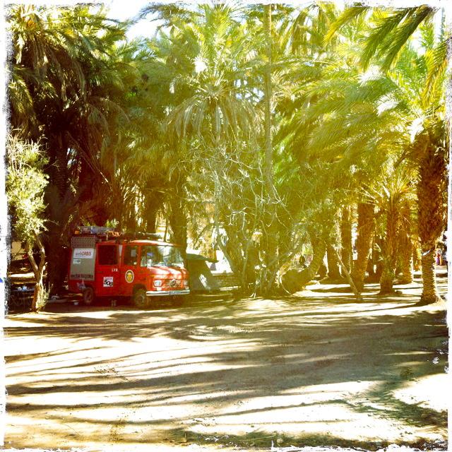 Meski Stellplatz im Palmengarten